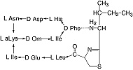 Structure Bacitracin_research grade, Ph. Eur.