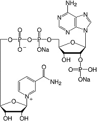 Structure &beta;-Nicotinamide adenine dinucleotide phosphate&#183;Na<sub>2</sub>-salt_research grade
